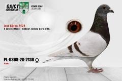 PL-0368-20-2138