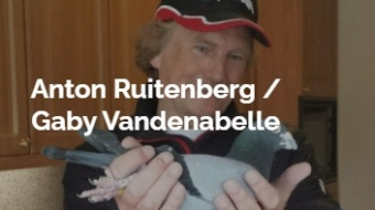 Vandenabelle